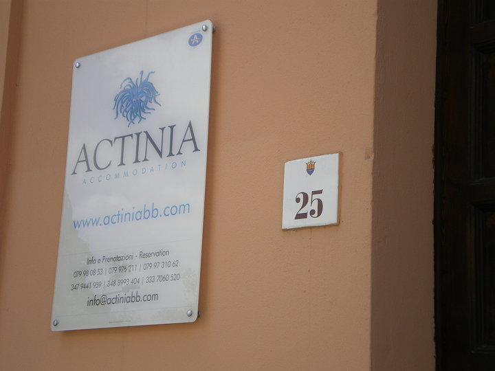 Actinia Accommodation img2