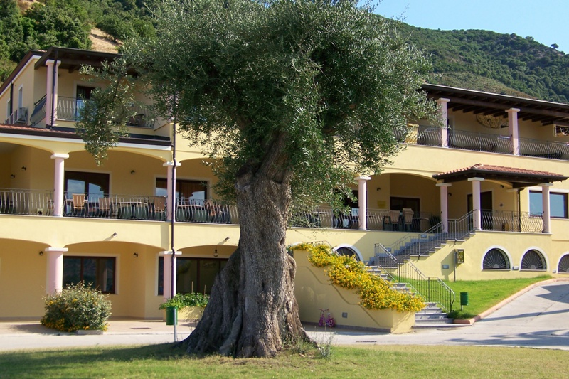 Hotel S'Olia bild1