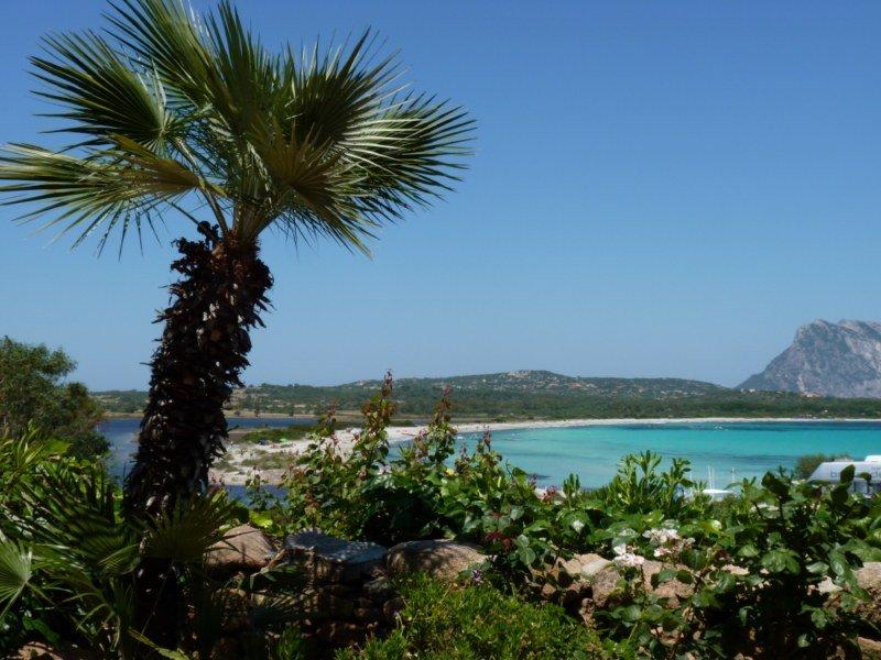 Paradise Resort Sardegna img3