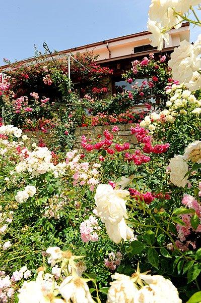 Il Giardino di Valentina Affittacamere bild4